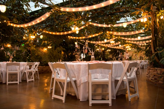 Highland Gardens Wedding Reception